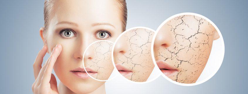 Őssejtterápia kozmetika